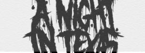 anightintexas-insert-02