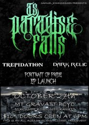 all ages night of live hardcore metal rock punk bands music mt gravatt pcyc brisbane queensland as paradise falls portrait of pride ep launch show